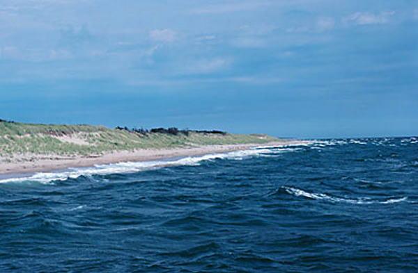 Zdravi i na plaži – sredstva za sunčanje